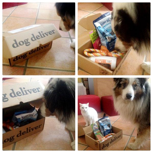 derek-box