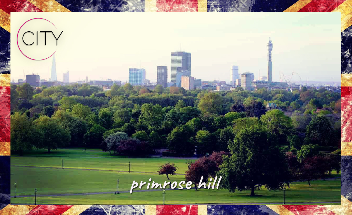 Primrose Hill - La Pinella City