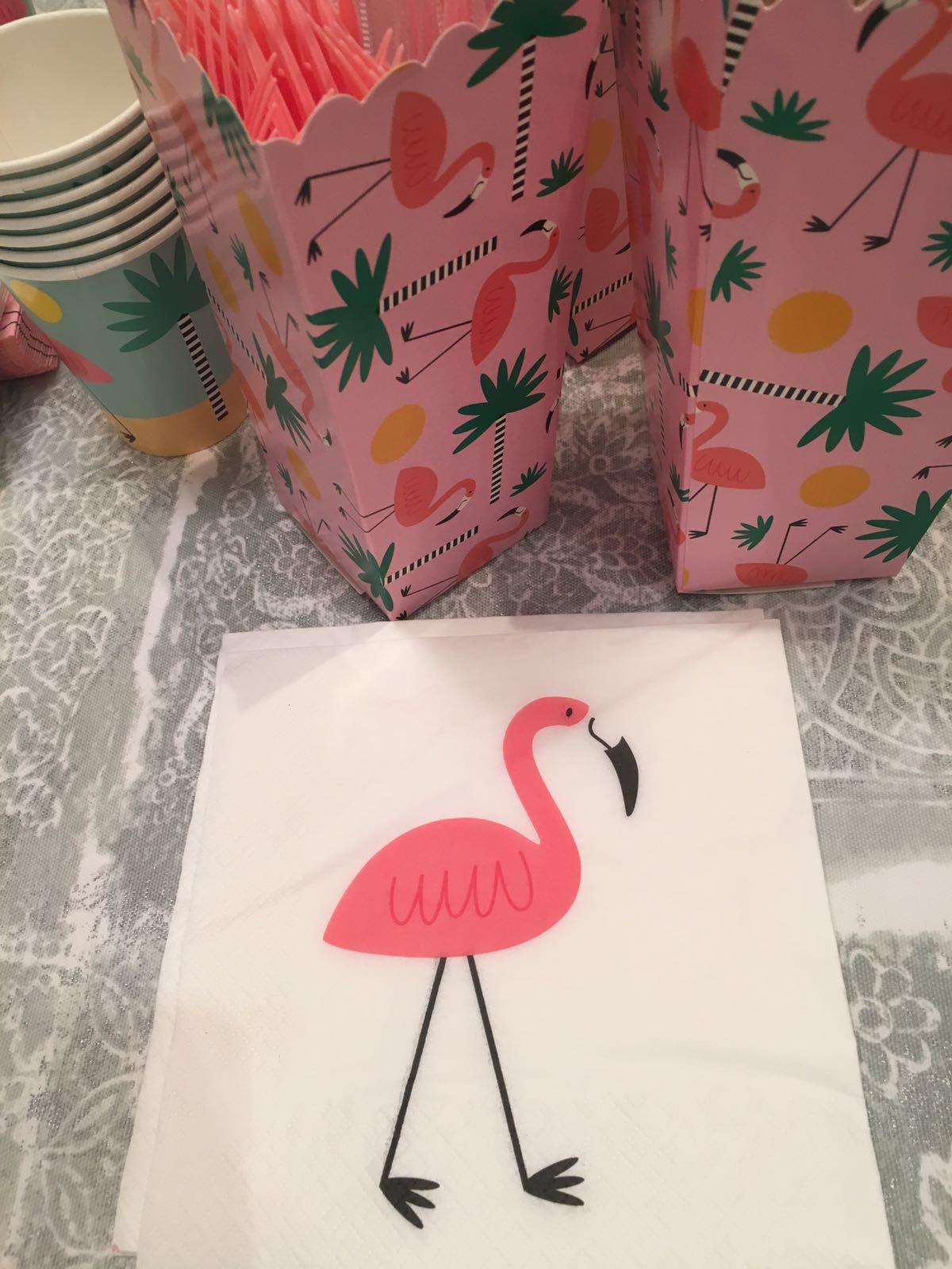 2__flamingo
