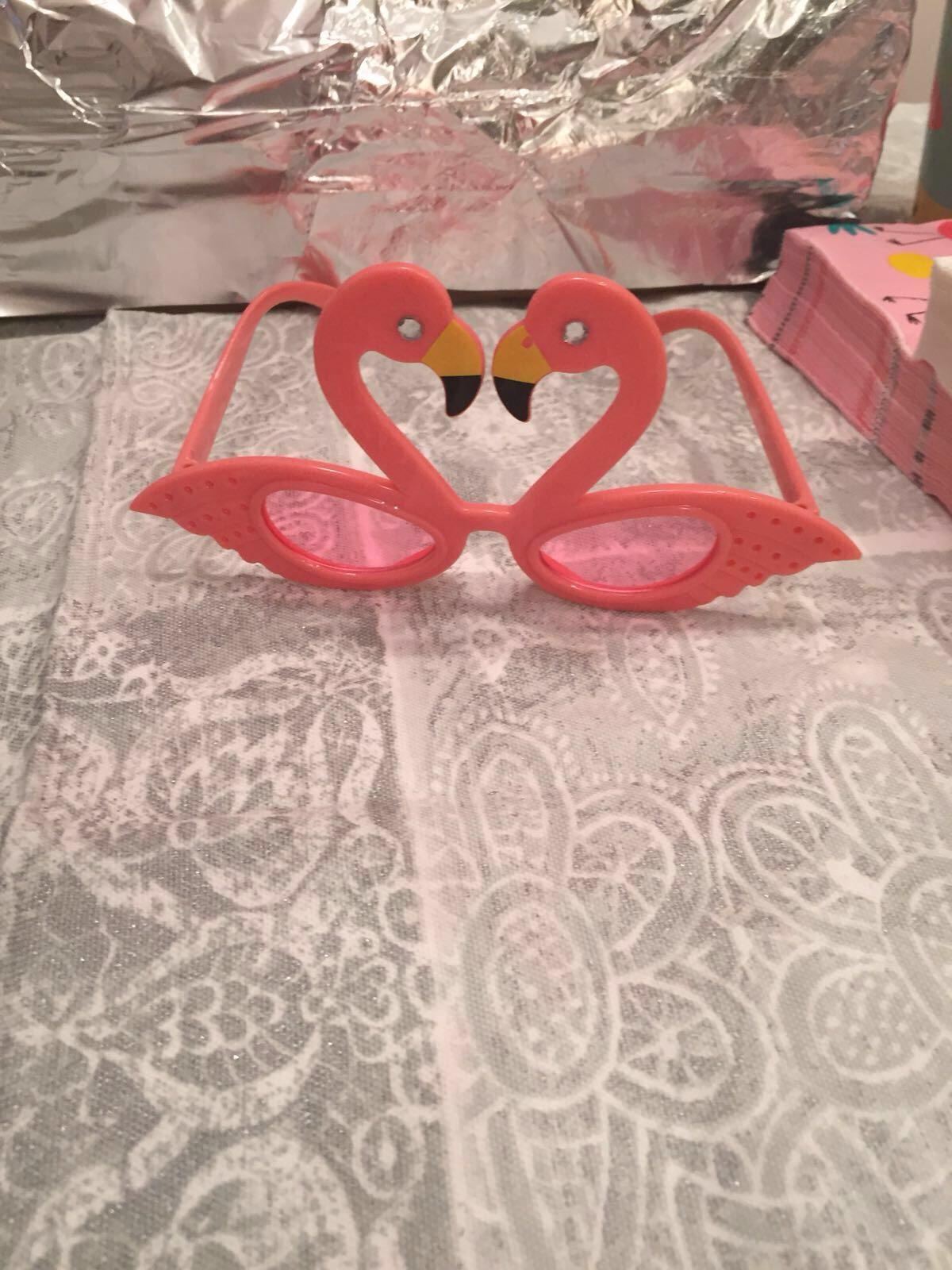 5__flamingo